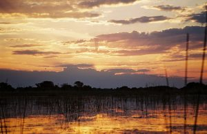 sunset en okavango